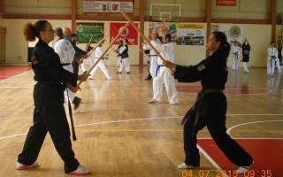 Panhellenic Hapkido Organization Χαπκίντο Ελλάδα