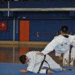 1ο πανελλήνιο τεχνικό πρωτάθλημα Χαπκίντο - Moo Hak KwanHapkido