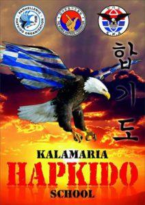 Kalamaria Hapkido School Θεσσαλονίκη Θοδωρής Λιακάκος