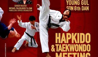Panhellenic Hapkido Organization Heuk Choo Kwan Αθήνα